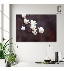 Πίνακας Σε Καμβά Λευκά Άνθη