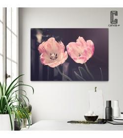 Πίνακας Σε Καμβά Pink Blossom